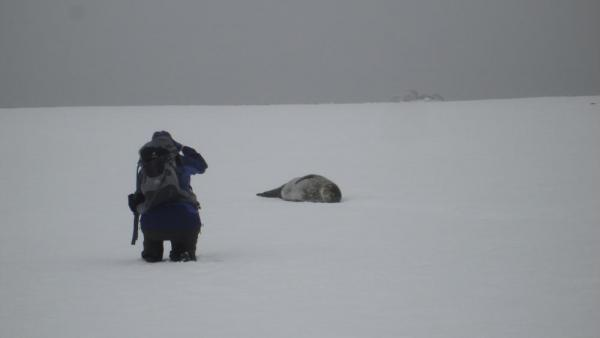 Renee gets upclose with a Weddell Seal