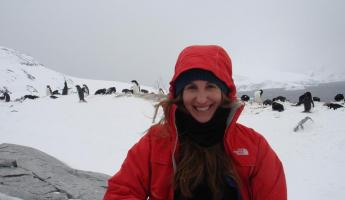 A lovely day with the Adelie penguins