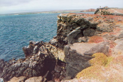 Ocean view on South Plaza during a tour of the Galapagos