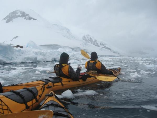 Kayakers -- see the Weddell seal to the left?
