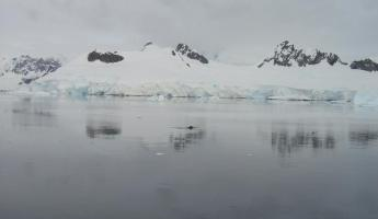 Antarctic mirror