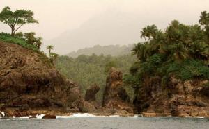 Explore the rich biodiversity of Sao Tome