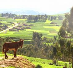 So many beautiful sites like this in the countryside of Peru