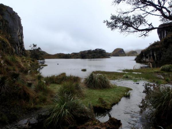 Beautiful Cajas National Park