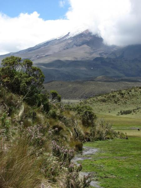 On the shores of Laguna de Limpiopungo, with Cotopaxi in the background