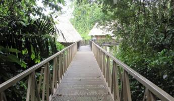 Pook\'s Hill Lodge - Crossing the bridge over the Roaring River to get to our cabana