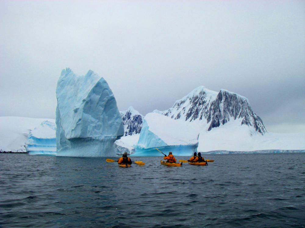 Icebergs in the harbor of Port Lockroy