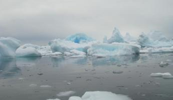 Floating ice in Cuverville Island