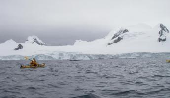 Chasing two humpbacks on our last landing in Antarctica