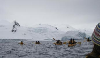 A group kayaks with humpback whales in Antarctica