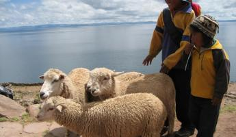 Local shepherds on Taquile Island