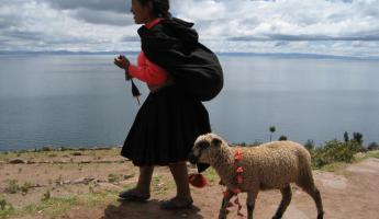 Young girl and her lamb on Taquile Island