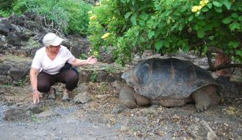 Check out the tortoise whisperer!