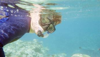 We are snorkeling in the Red Sea!