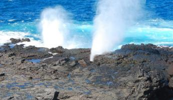 The blowhole, millions of years in the making