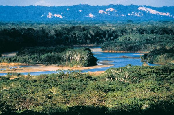 Madidi River, enroute to Chalalan Lodge in Bolivia