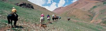 Horseback Riding through the Chilean landscape