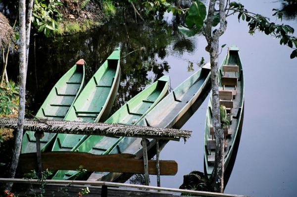 Dugout canoes found in the Amazon during an Ecuador trip
