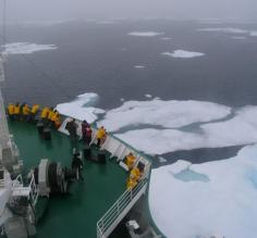 Fog Shrouded Polar Sea Ice, Greenland