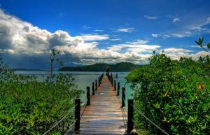 Numerous national parks in Borneo await you