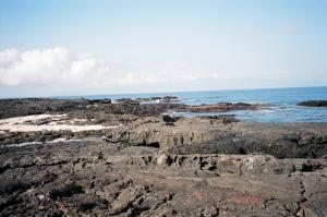 Exploring Galapagos shoreline during an islands cruise