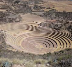Moray crop circles