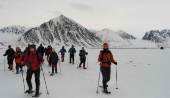 Embark on a snowshoe expedition