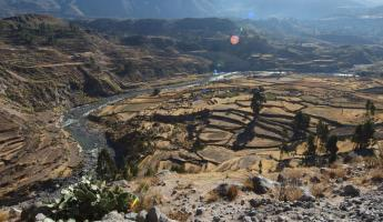 Ancient Terraces, Colca Canyon