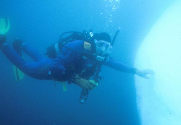 Diving the arctic waters