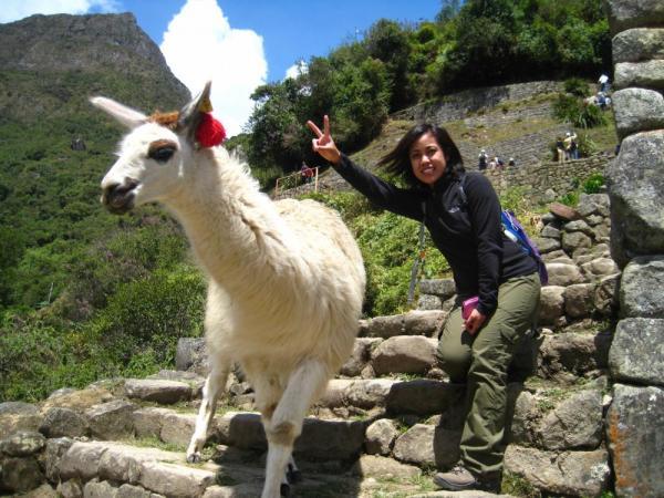 With a llama at Machu Picchu