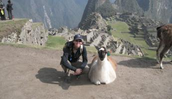 Como se llama?  Llamas were everywhere!