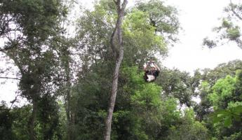 Zip line for all ages - Iguazu Falls jungle tour