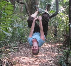 Monkeying around in the Amazon