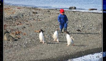 The Penguin Whisperer prepares to do his work for the day.