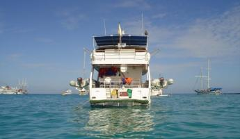 Equipped with two pangas, explore secluded shores in the Galapagos