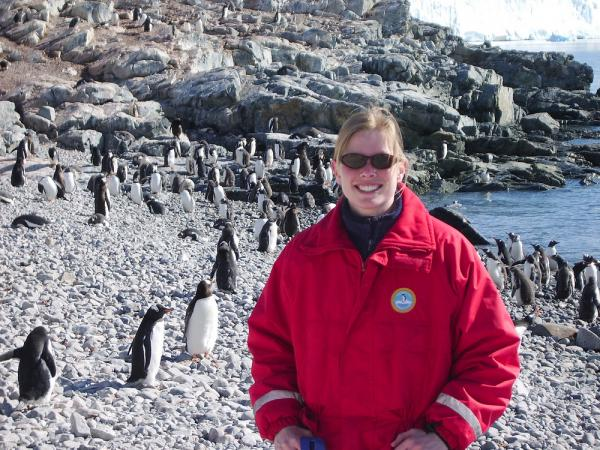Viewing penguins on an Antarctica wildlife tour