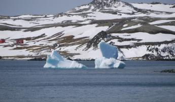 Blue icebergs near King George Island