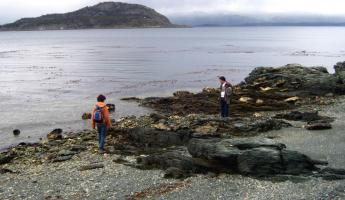 Beagle Channel shore in Tierra del Fuego Natl Park