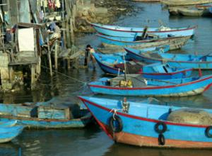 Fishing Boats at the Dock in Asia