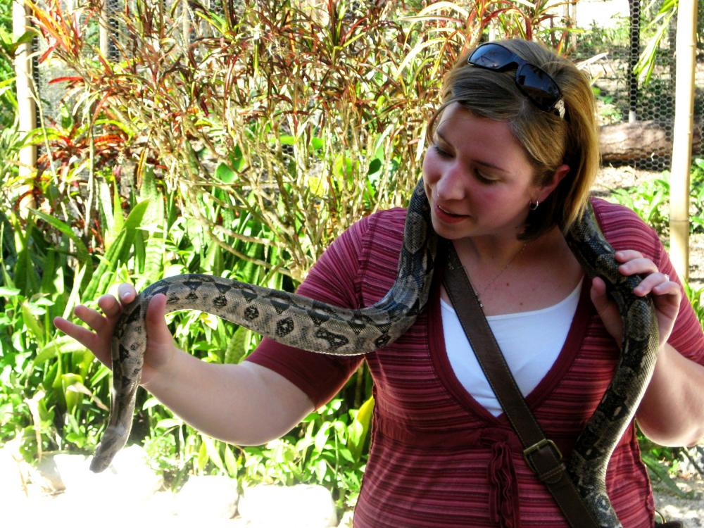 Holding a boa constrictor at the Belize Zoo
