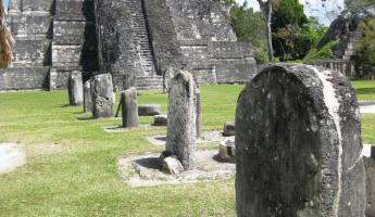 A row of stella and altars - the Mayan history