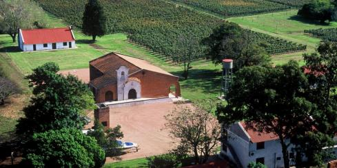 Church and vineyards