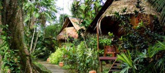 Welcome to Shawandha Lodge - in harmony with nature