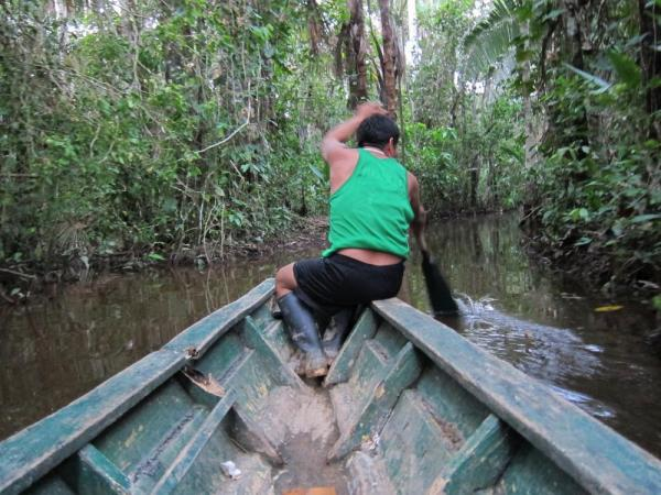 Exploring the Amazon