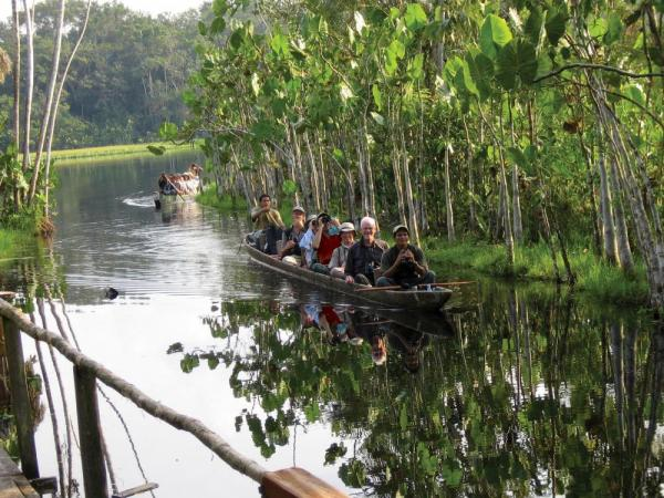 Wildlife watching in the Amazon in traditional dugout canoes