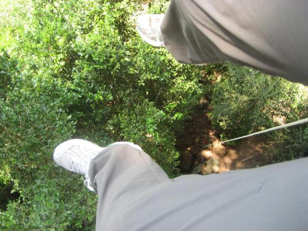 A bird's eye view of the Belizean rainforest while rappelling in to the Black Hole