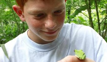 Finding a tree frog in Costa Rica