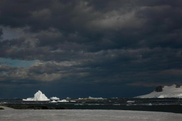 Icebergs at Stonington Island