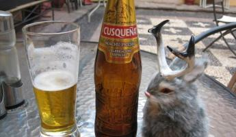 Peruvian beer time with Jackie Lope