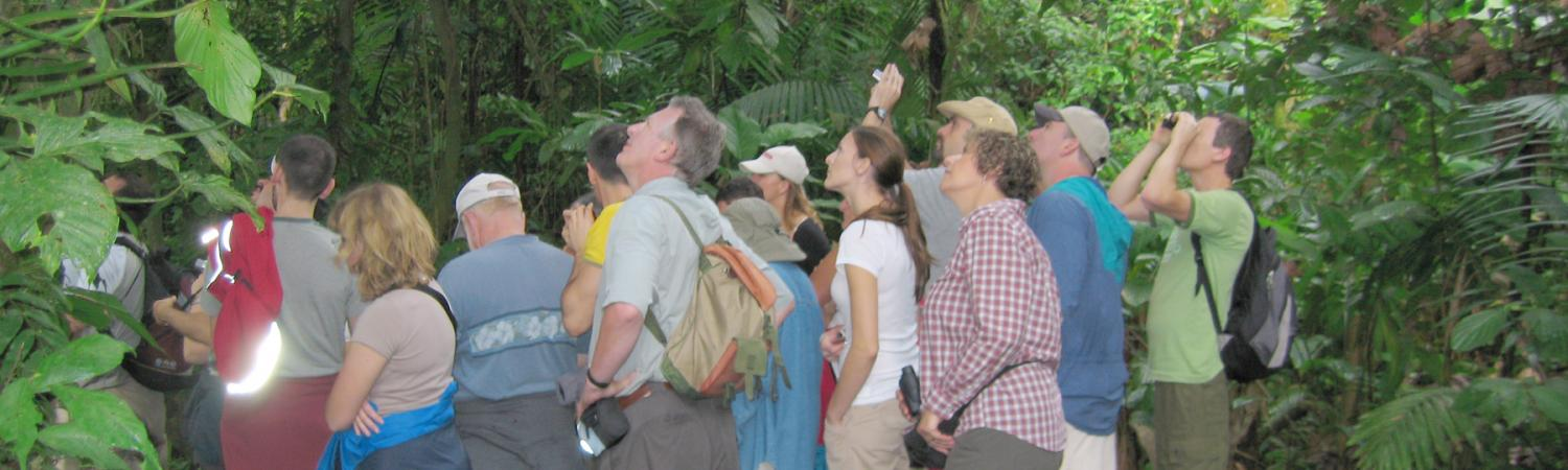 Jungle hike on Costa Rica tour